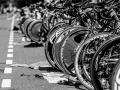 1915 20160924 Triatlon Milligerplas Zwolle_GJR1915 export ZW A